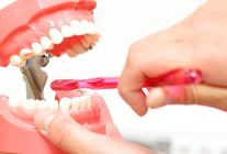 総合的な歯科診療を目指して
